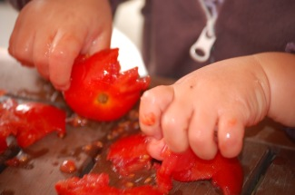 tomatoe (8)